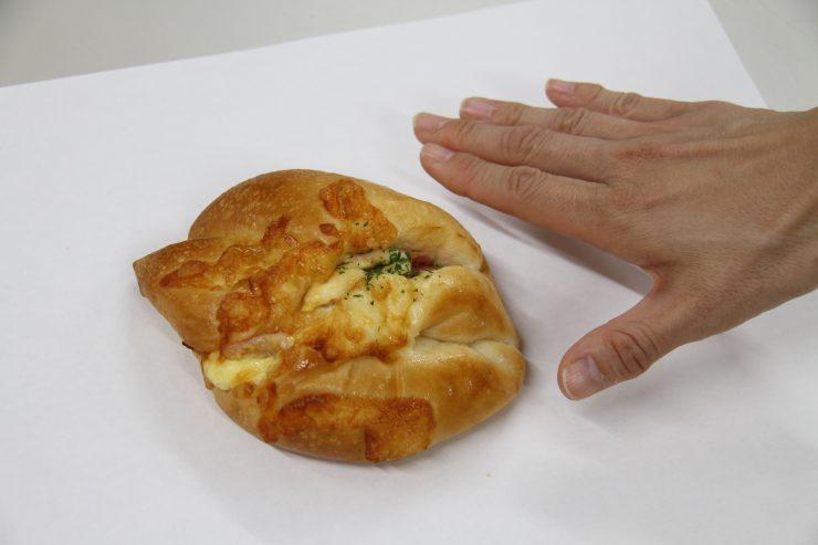 パンと手との比較