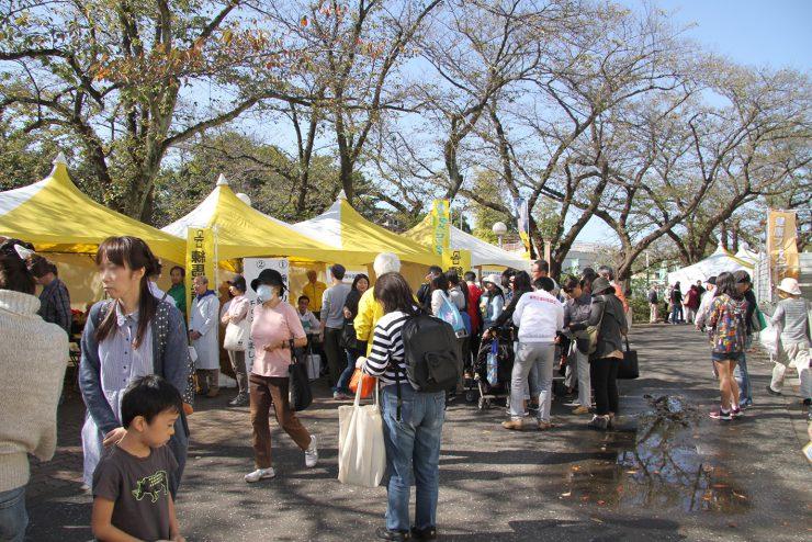健康フェスティバル