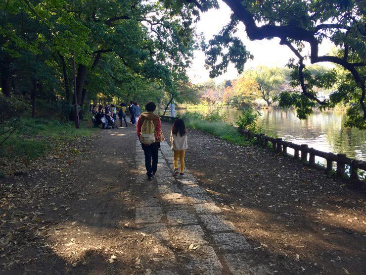 石神井公園 池の道