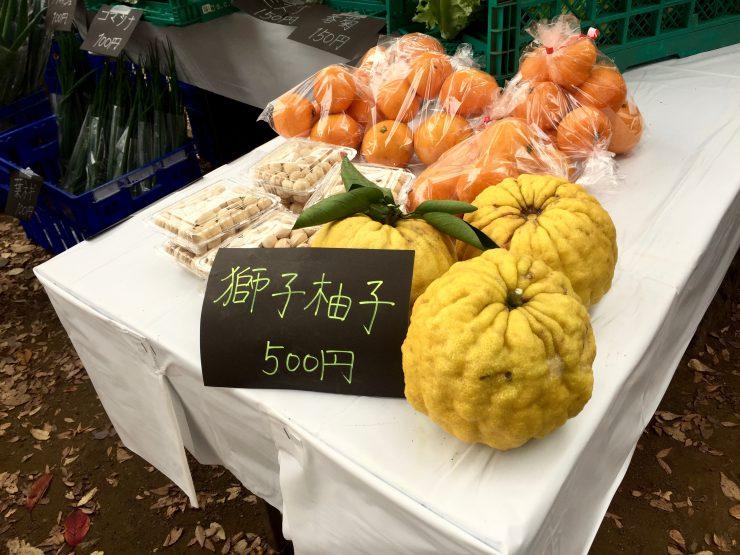 世界都市農業サミットプレ(獅子柚子)