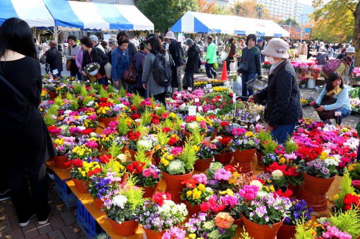 農業祭2018(園芸)