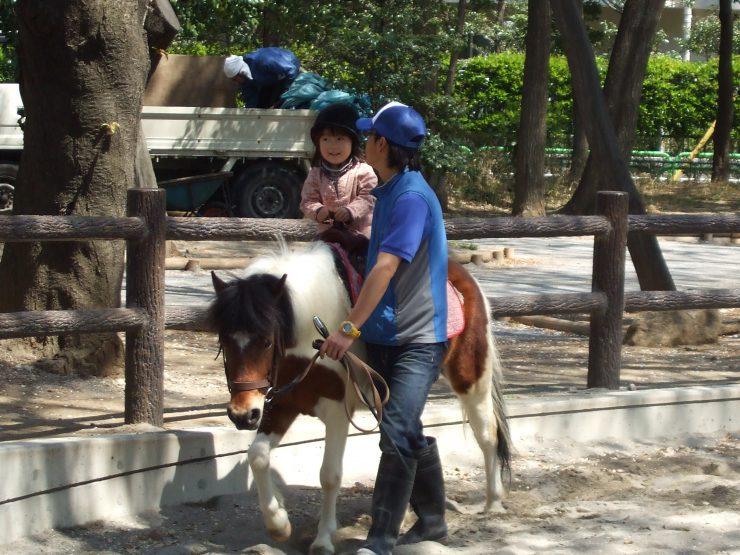 出張動物園 ポニー乗馬